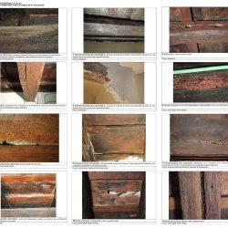 Solai in legno_analisi macroscopica delle forme di alterazione